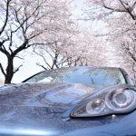 ミニパナメーラ:今年は2台とも桜と写真を撮れた件。写真を公開。~パナメーラ編~