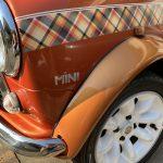 ミニパナメーラ:クルマ的には最悪の季節。まとめて洗車だ。